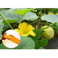 Food Grade Natural Plant Extract Oil Cold Pressed Pumpkin Oil Prostate Protection