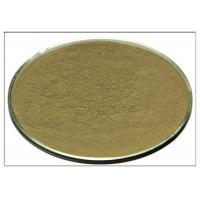 CAS 77 52 1 Rosemary Leaf Powder , Ursolic Acid Rosemary Leaf Extract