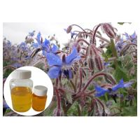 Natural Extract Borage Oil Liquid Omega 6 , Borage Oil For Skin And Hair Hexane Refining