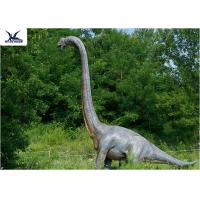 Buy cheap 18 Meters Giant Realistic Dinosaur Models , Life Size Farm Animal Models  product
