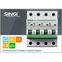 230V single phase 4P Miniature Circuit Breakers for protection overload and short circuit