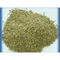 Cumin Seeds Cumin Seeds Name:Cumin Seeds