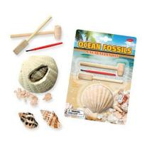 Ocean Fossils (Sea Shell) Dig Kit, 6 assorted