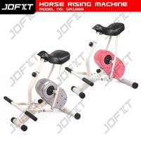 Buy cheap Horse Riding Machine GB1000 product