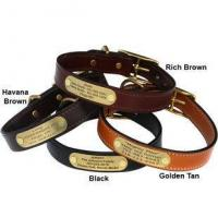 English Bridle Leather Dog Collar with Personalized Nameplate