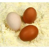 Buy cheap Food Additive Egg Albumen Powder product