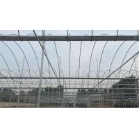 Glass Plate Greenhouse